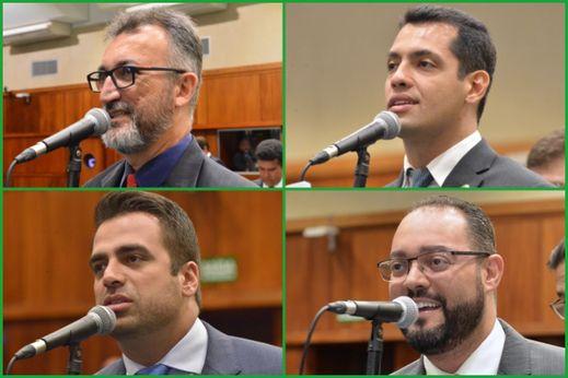 Comissões temáticas da Alego definem novo comando para o 2° biênio