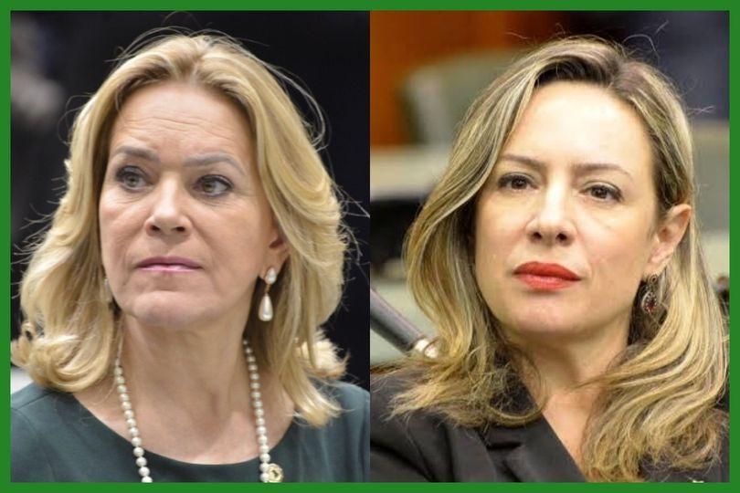 Delegada Adriana Accorsi e Lêda Borges querem obrigar a divulgação do Disque 180 e Disque 100 em locais públicos