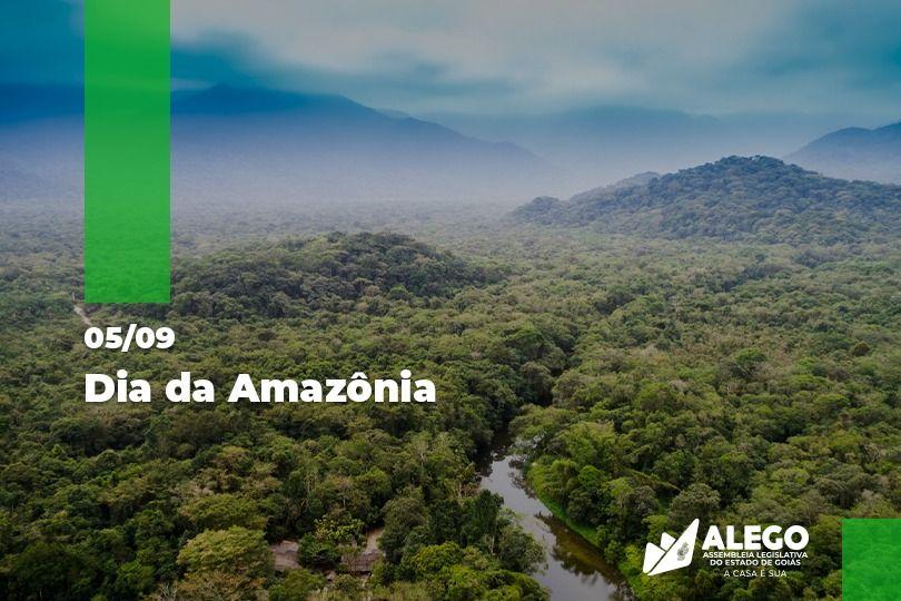 Dia da Amazônia chega em meio ao crescimento do desmatamento do maior patrimônio natural do planeta