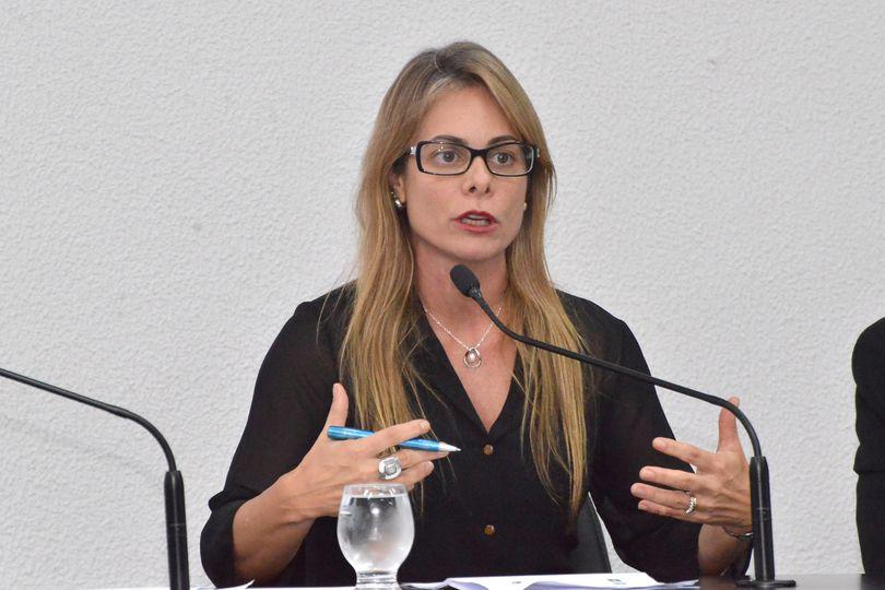 Secretária Cristiane Schmidt apresenta aos deputados, nesta 4ª-feira, a proposta orçamentária do Estado para 2021
